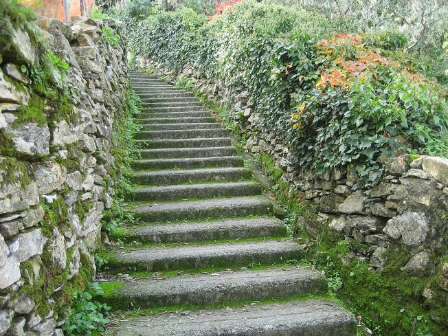 steps_stairs_nature